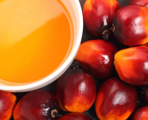Olej palmowy niekoniecznie zdrowy http://zdrowszeznatury.pl