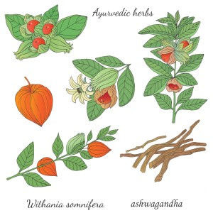 ashwagandha colour